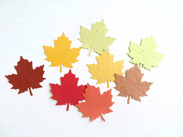 Maple Leaf Die Cuts Made From Paper Embedded With Flower Seeds