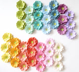Rainbow Set of 100 Plantable Seed Paper Rose Favors