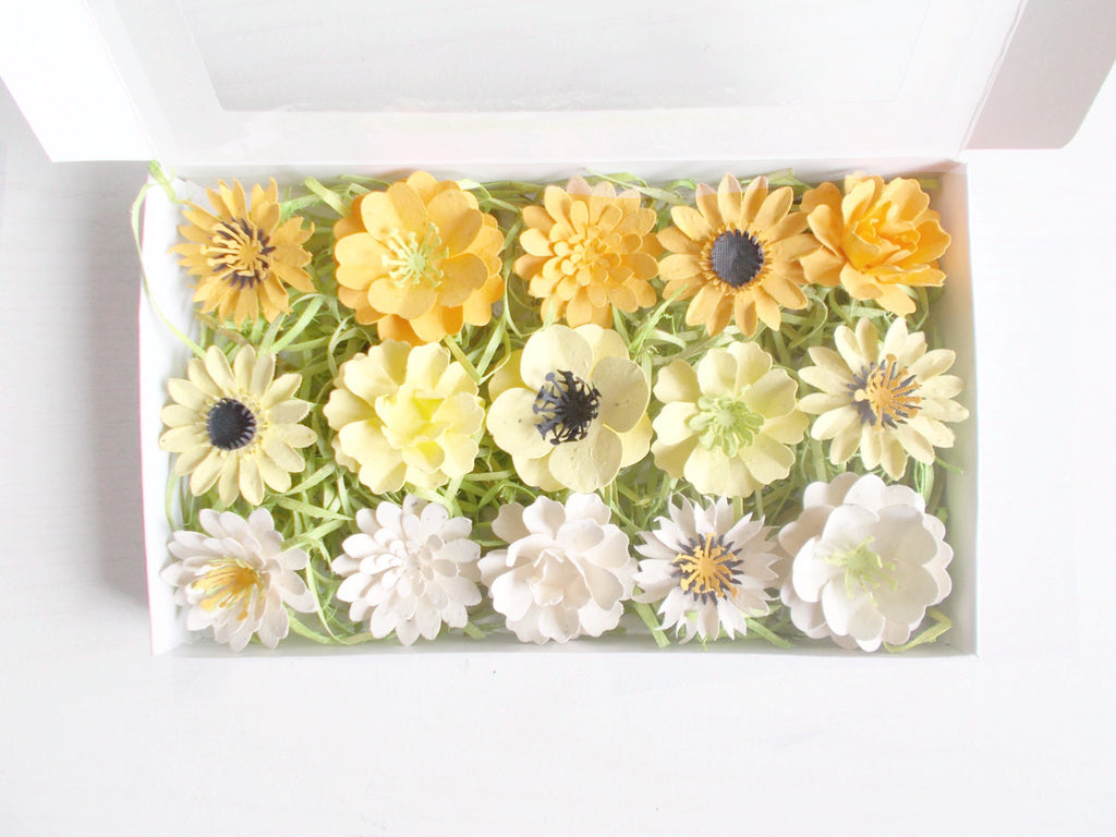 Yellow and Cream Seeded Paper Flowers Gift Set