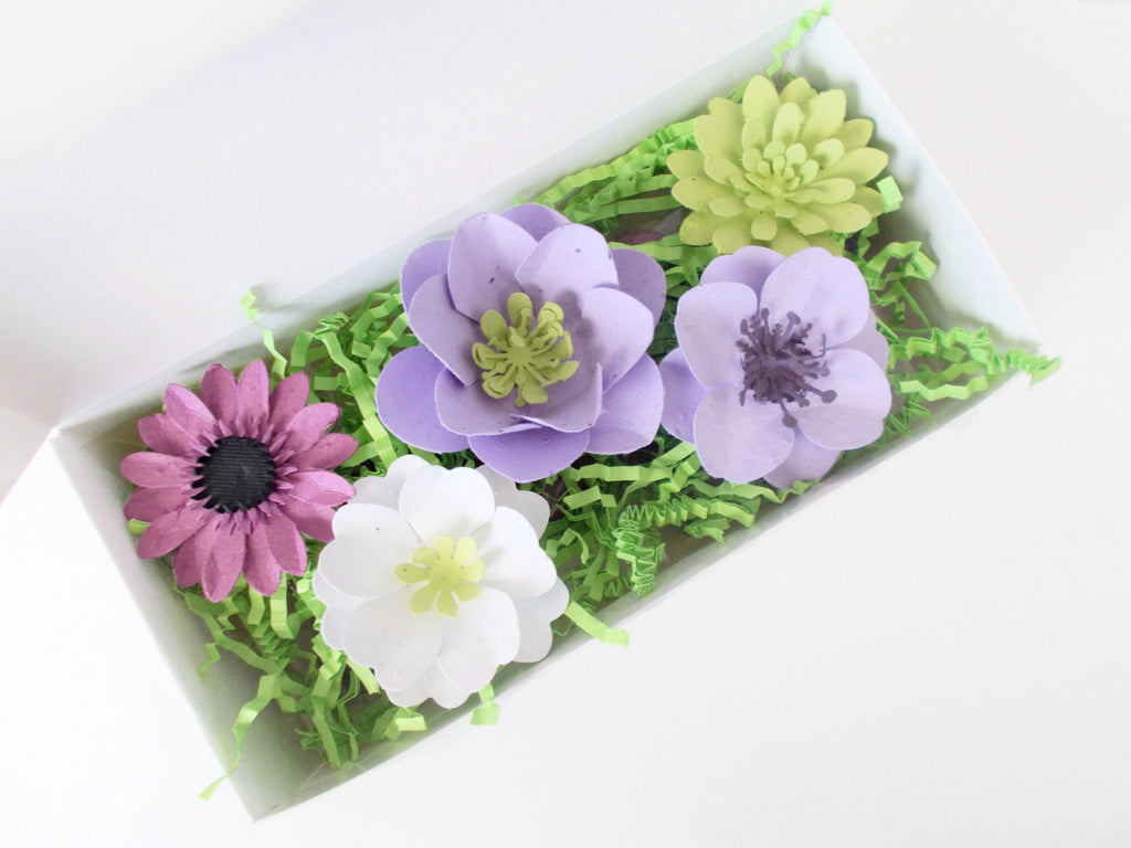Purple Lovers Seed Bomb and Plantable Paper Gift Set.