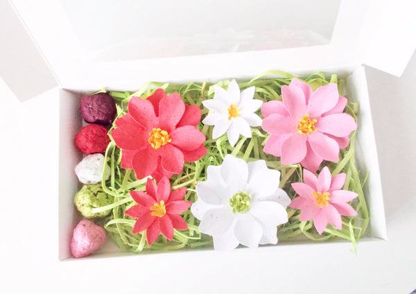 Seeded Paper Poinsettia Flowers and Seed Bombs Gift Set