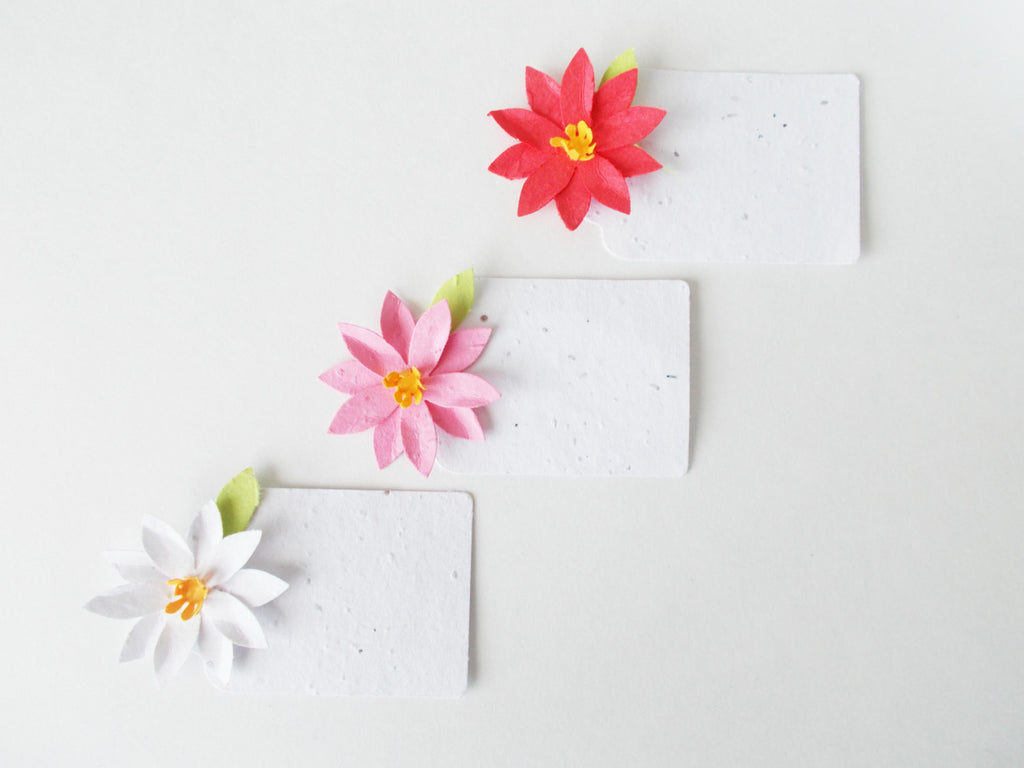Plantable Seed Paper Poinsettia Gift Tags - Escort Cards - Place Cards