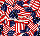UNITED STATES FLAG DIP KIT