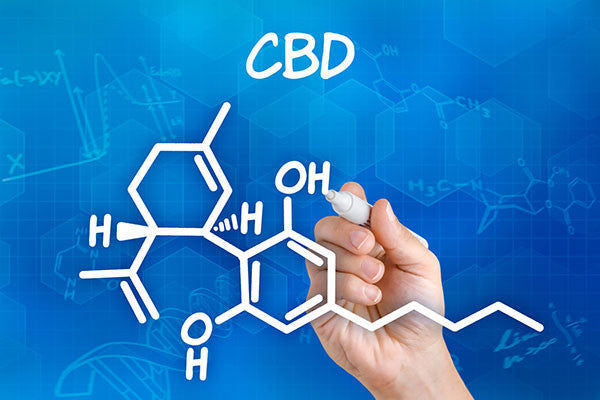 You know what CBD is, but how is it made?