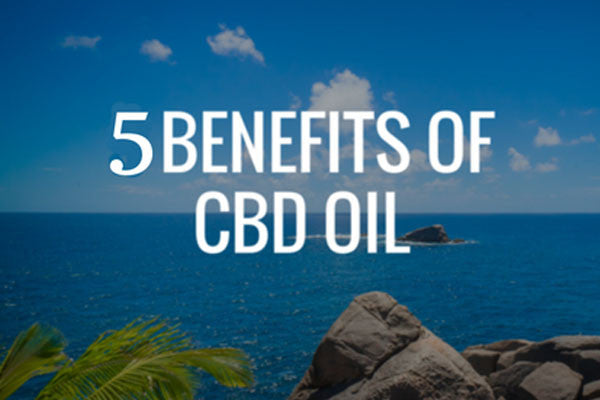 5 LITTLE-KNOWN USES FOR CBD