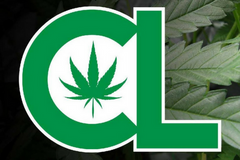 Cannabis Life Radio