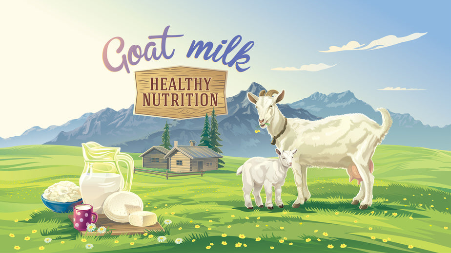 Why You Shouldn't Make Your Own Goat Milk Formula