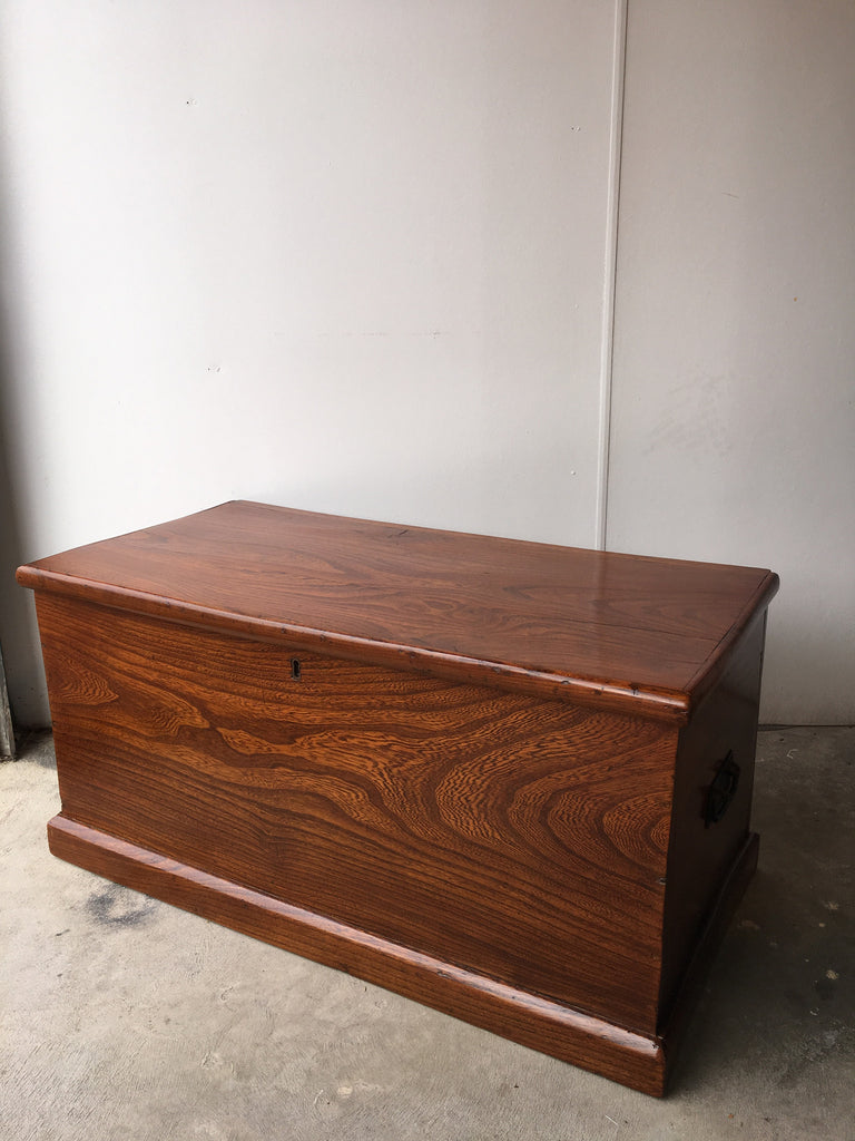 SOLD - Elm Trunk