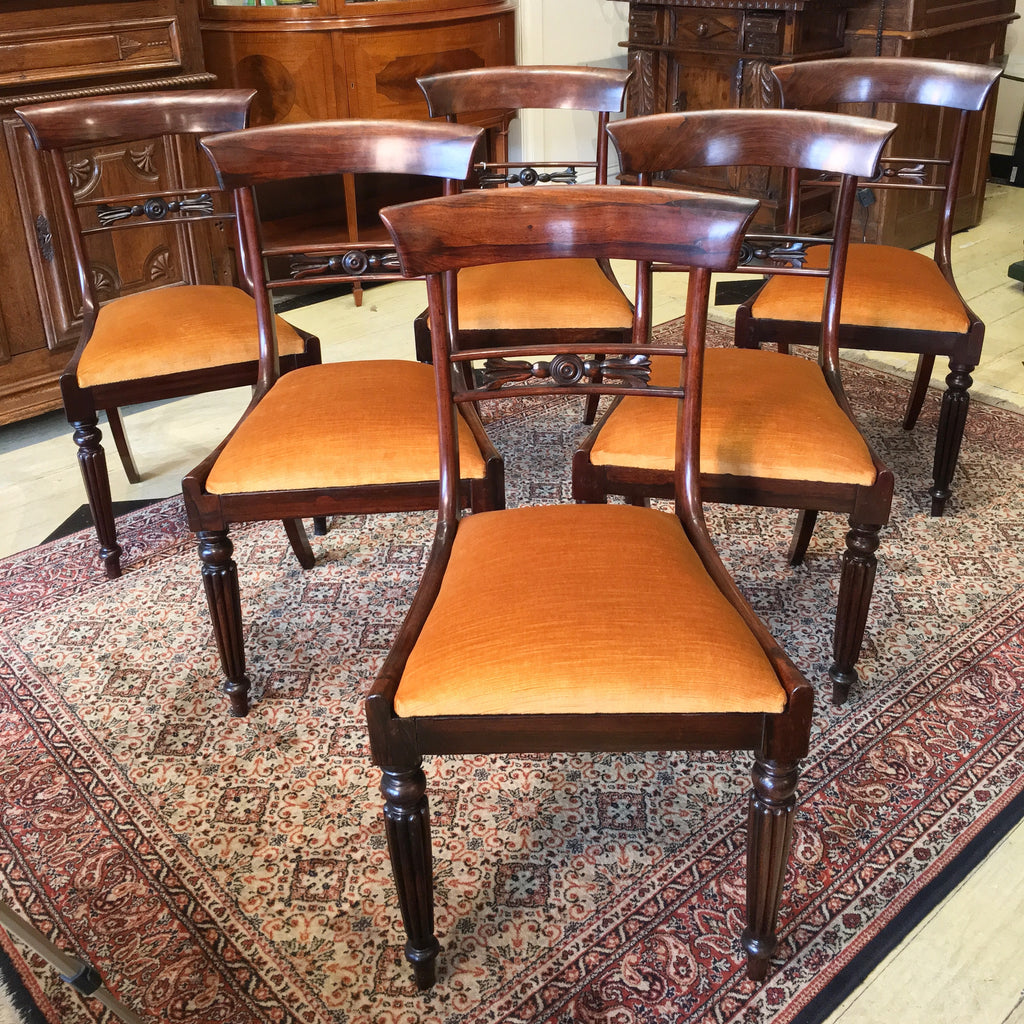 Regency Rosewood Dining Chairs