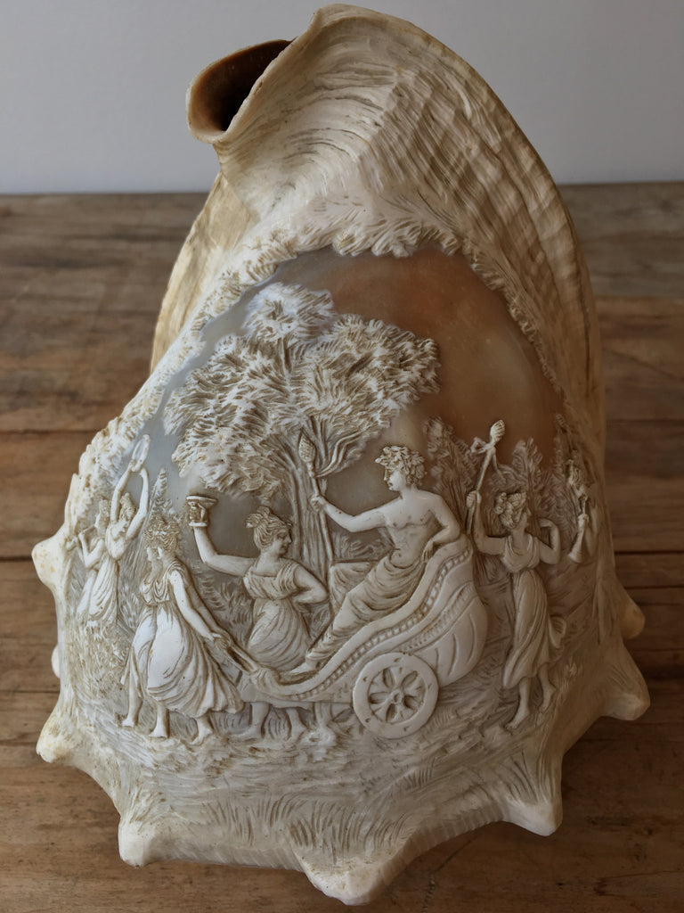 Carved Cameo Conch Shell