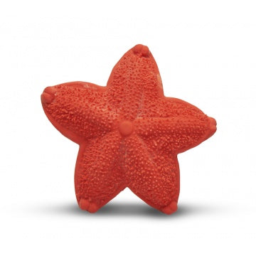 Sensory teething toy starfish