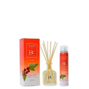 Aroma Set - Holiday Scent - Doctor Aromas