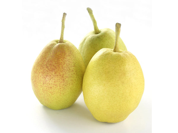 Pears, Fragrant