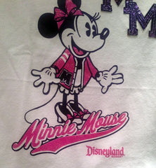 Fenway Park used on Disneyland sweatshirt