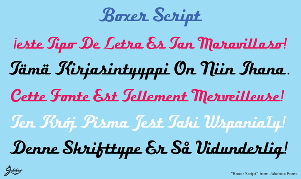 Sample of Boxer Script