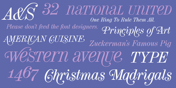 Sample of Torino Display Italic