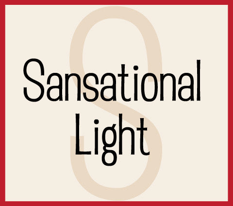 Sansational Light Banner