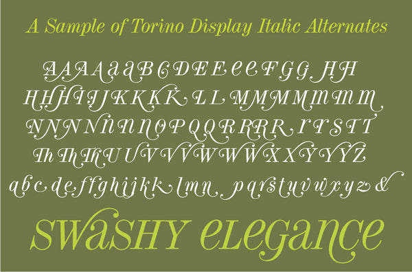 Sample of Torino Display Italic Alternates