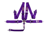 Cam Lock 5-Point Racing Restraint System - 60''; - MorrisClassic.com,