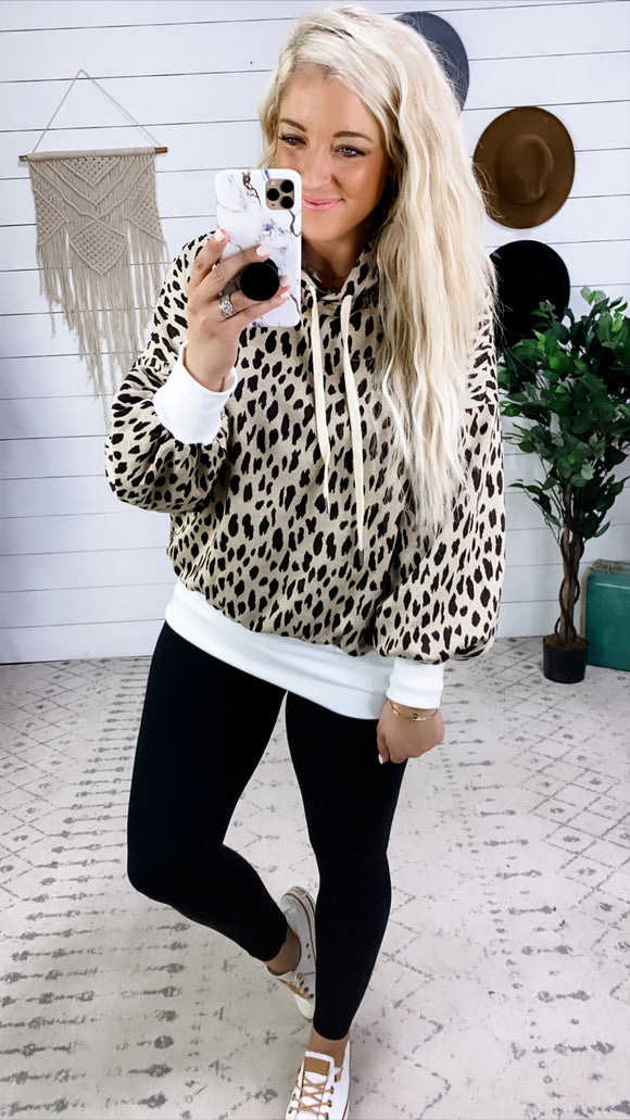 Clearly A Cutie- Leopard Hoodie w/ White Band