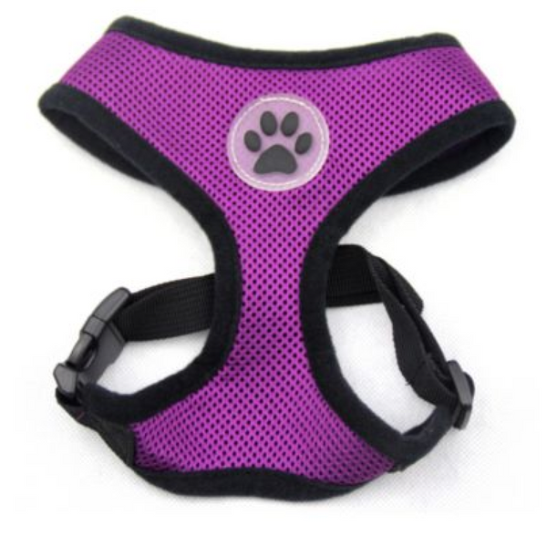 4Paws Padded Dog Harness - 4Paws