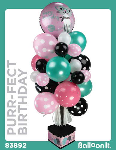 Purr-FECT Birthday Balloon It Bunch. All-in-one complete DIY Kit (1) - Balloon It