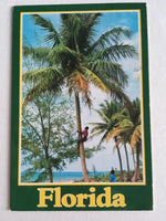 90's Florida Postcard Climbing for Coconuts Palm Tree Posted 1991
