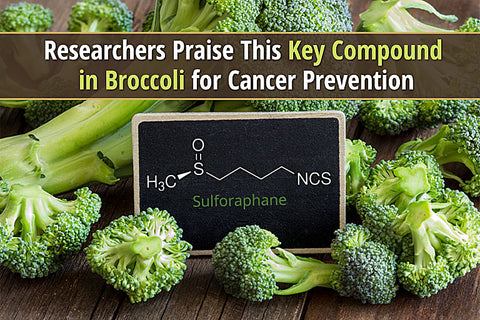 Picture Source: https://thetruthaboutcancer.com/compound-broccoli-for-cancer-prevention/