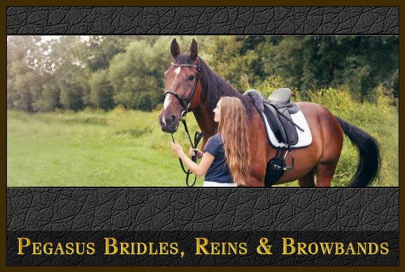 Bridles, Reins and Browbands