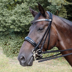 Bridle and Browband