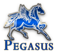 Pegasus® Butterfly Saddles
