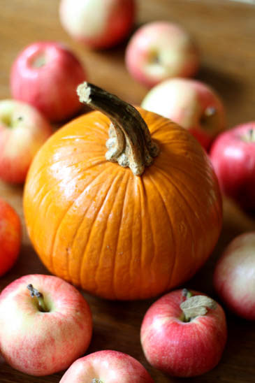 Fall is in the air, and that means Apple and Pumpkin foods!