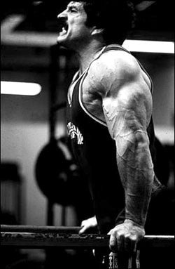 Mike Mentzer Heavy Duty Tricep Dips