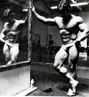 Mr Heavy Duty Mike Mentzer