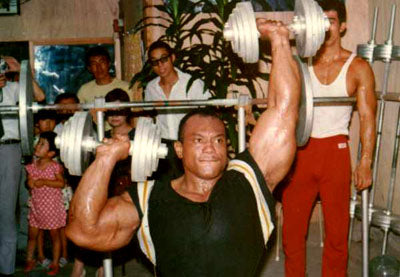Sergio Oliva Dumbbell Alternating Shoulder Presses