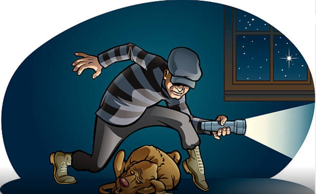The Dream Detective Blog: HOME INVASION DREAMS