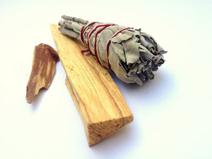 The Truth About White Sage and Palo Santo - by Shae Windsong