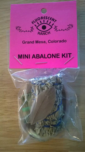 Abalone Mini Smudge Kit