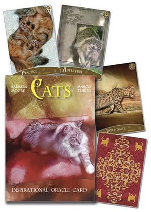 Cats Inspirational Oracle Cards by Barbara Moore