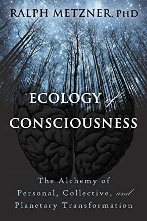 Ecology Of Consciousness by Ralph Metzner