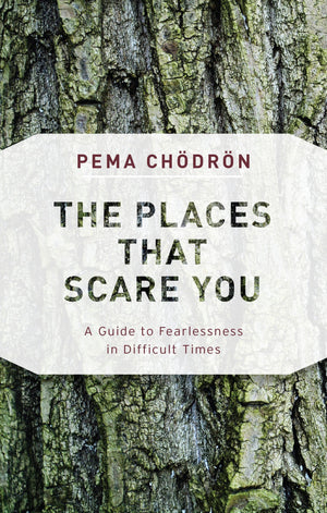 Places That Scare You by Pema Chodron