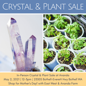 May 02, 2021 - Sunday 12-3pm PDT - Crystal Sale & Plant Sale In-Person at the Blue Lotus Temple