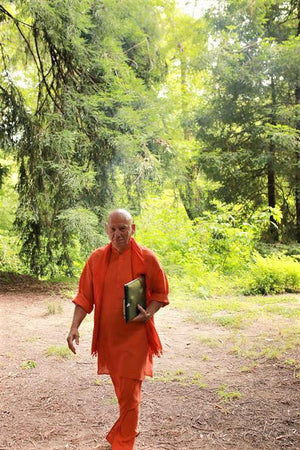 June 07, 2019 - Friday 6:30-8:30pm - What is Kundalini Sadhana? - with Swami Khecaranatha