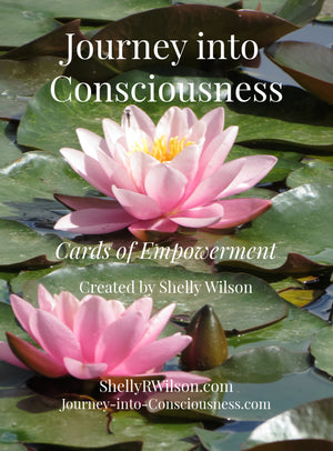 August 16, 2019 - Friday 10:30-4:30pm - Private Sessions with Intuitive Medium Shelly Wilson