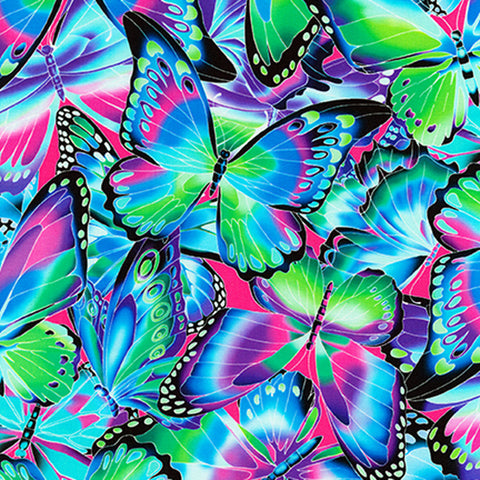 Robert Kaufman Nature Studies Jewel Butterflies