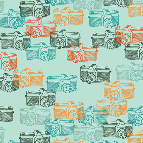 {New Arrival} Art Gallery Fabrics Maara Captured Memories
