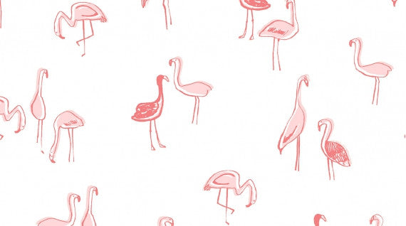 Dear Stella KNIT Flamingos White