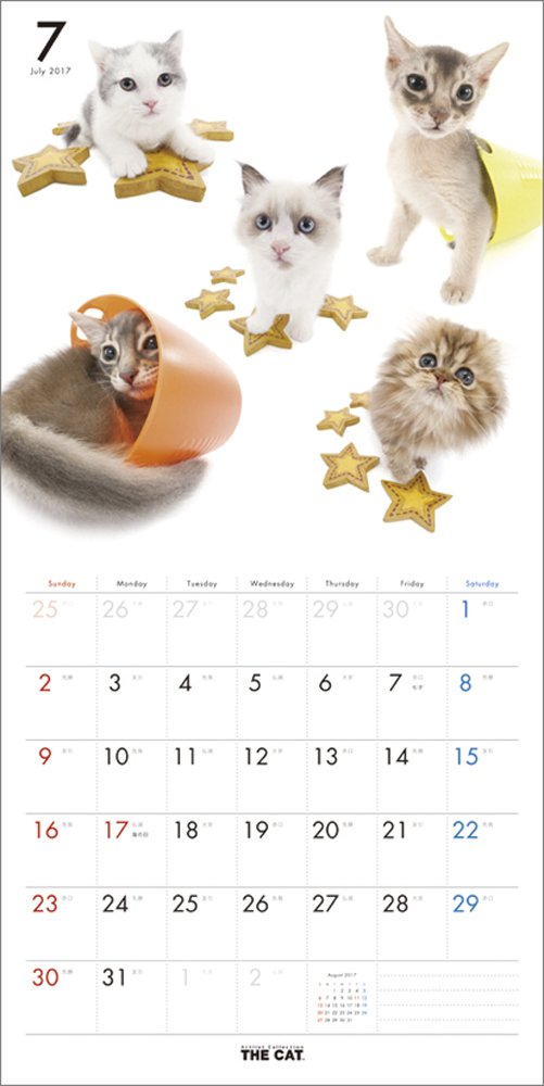 THE CAT Wall Calendar 2017 Cat All-Star