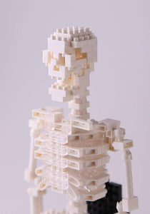 nanoblocks Nbm014 Nb - Human Skeleton Building Kit