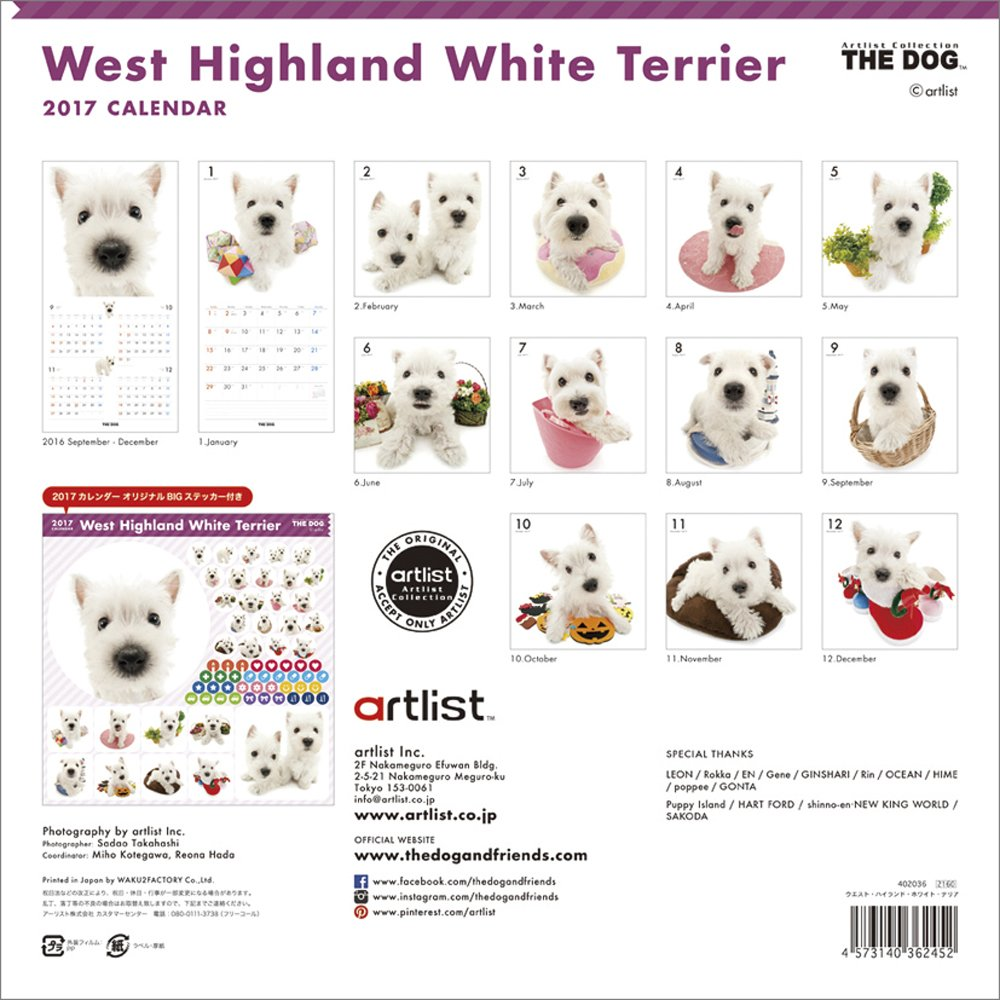 THE DOG Wall Calendar 2017 West Highland White Terrier